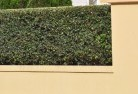 Ainslie ACT Decorative fencing 30